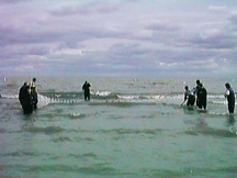 seining in Lake Erie